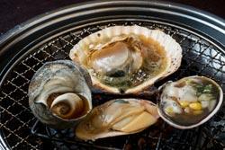 海鮮茶屋・貝族料理 みのしょうの取材記事
